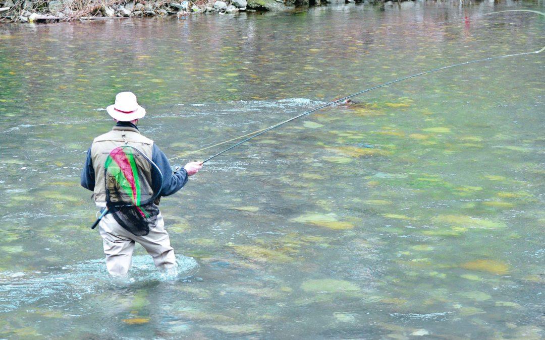 L'AAPPMA les pêcheurs du plateau